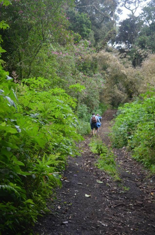 Hiking up Volcano Acatenango on the Secret Route