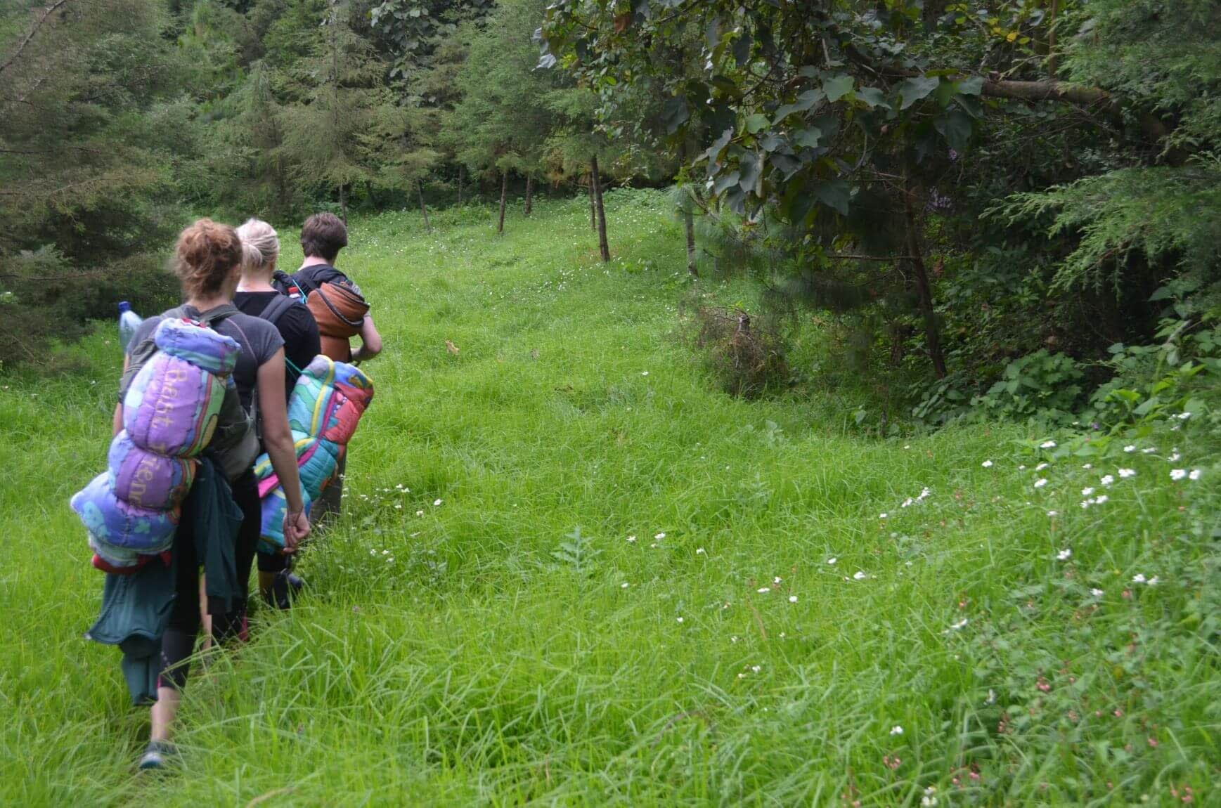 the secret trail at acatenango volcano