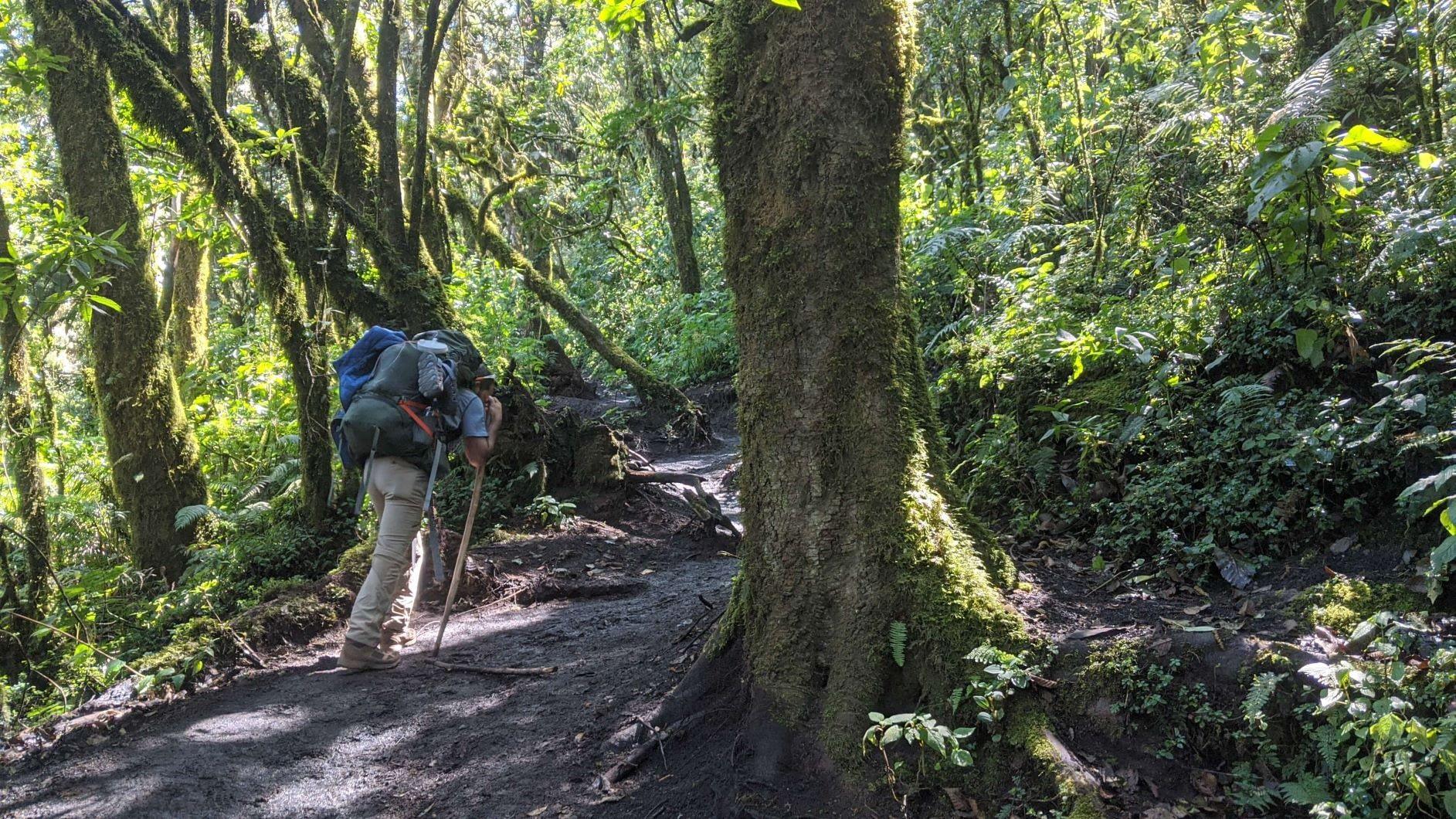hiking acatenango volcano the best hikes in Guatemala