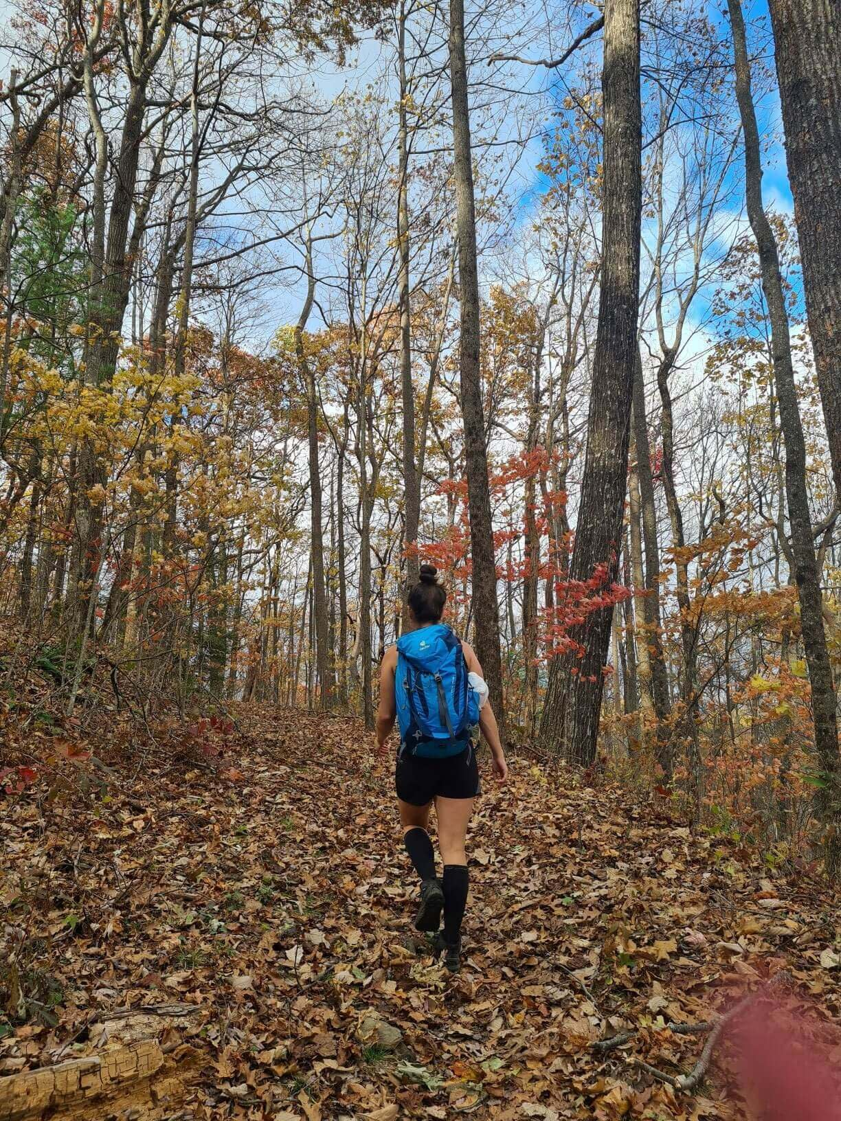 walking without hiking blisters at unicoi gap in the fall