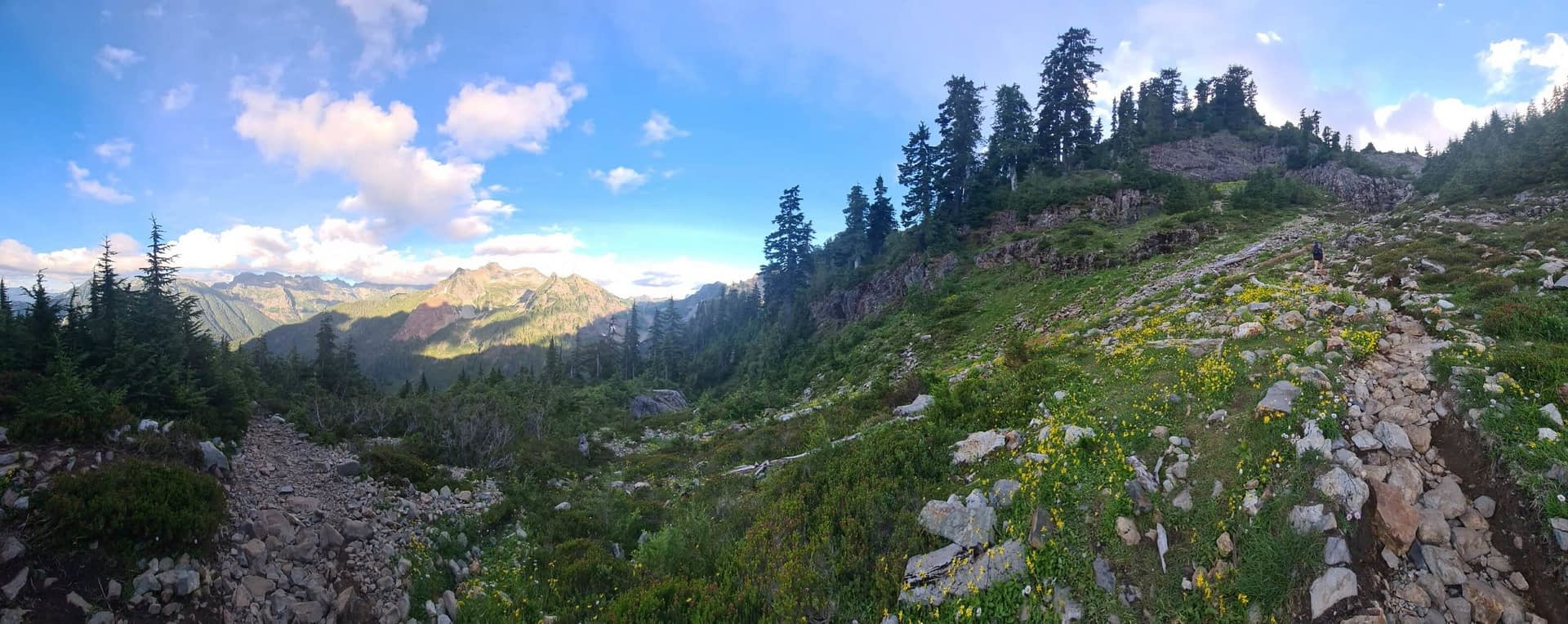 panoramic view of gothic basin trail in verlot, washington, wildflowers and mountain views